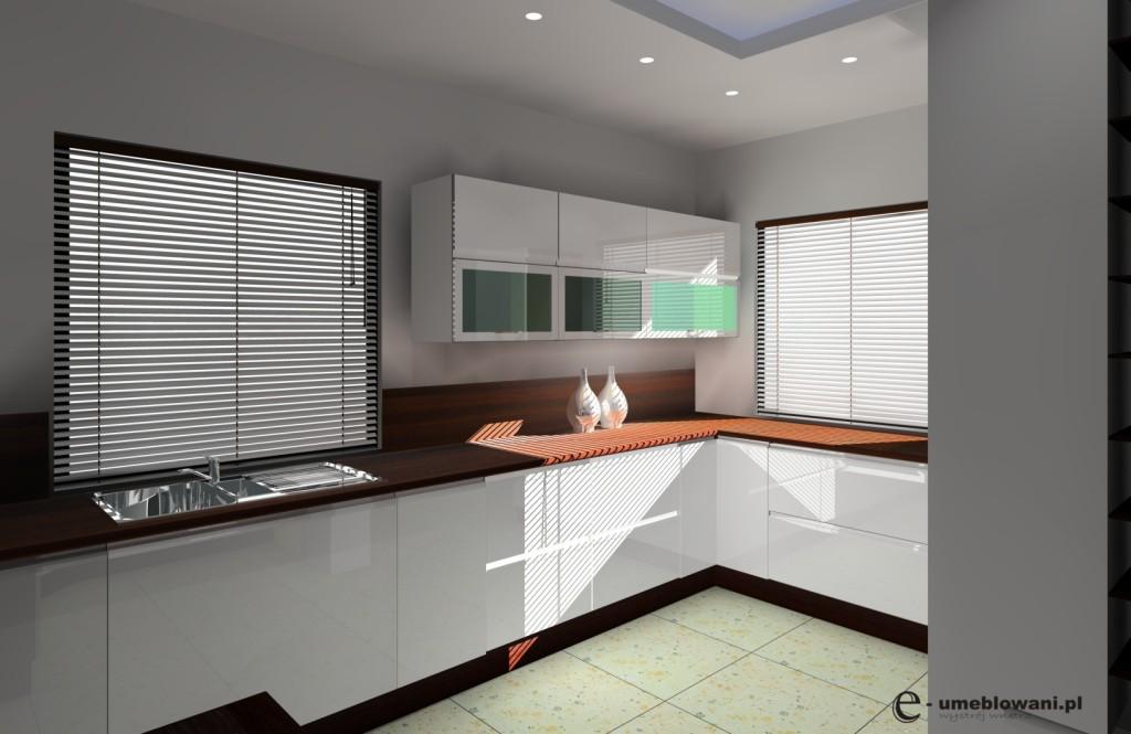 Archiwa kuchnia z dwoma oknami  Projektowanie i